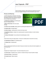 Idioms and Phrases Capsule - PDF