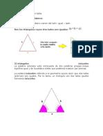 triangulo tipos