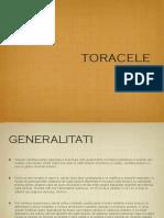 ToraceC.pdf