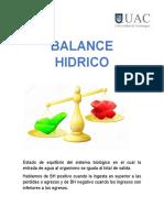 BALANCE HIDRICO TERMOLAMINAR.docx