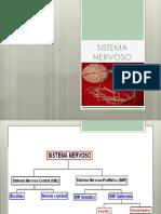 Sistema Nervoso, Sensorial e Endócrino