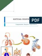 Sistemas Digestório, Respiratório e Cardiovascular