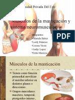 neuromscular-161008181442