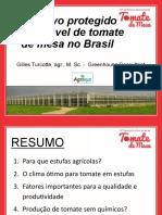 Cultivo Proetegido de Tomate