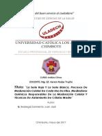 Monografía_Juan Bedregal I Unidad