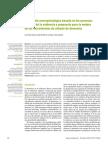 Evaluacion Neuropsicologica de las DEMECIAS