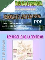 Desarrollo de La Dentición Decidua