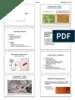 Curso Revision Cirugia 2 2017 Alumno.pdf