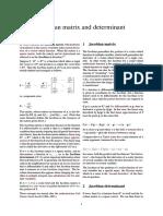 Jacobian Matrix and Determinant