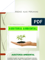 TIPOS AUDITORIA AMBIENTAL
