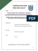 Proyecto Arroz