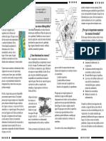 El Agua y Las Cuencas Hidrograficas