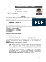 Cv Alcides Reveydo Villanueva Saldaña