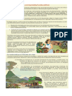 Ficha Informativa - Sismos