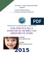 Guia de Practica Clinica de La Atencion de Un Niño Con Sindrome de Down