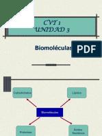 4-2biomoleculas-ppt-100709080802-phpapp01.pps