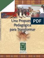 Propuesta pedagogica.pdf