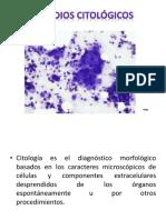 estudioscitolgicos-121007103152-phpapp02