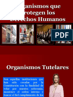 Organismos Que Protegen Los D.D.H.H 2013