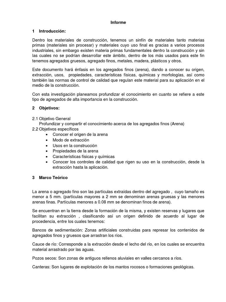 Informe-Arena