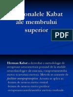 180169985-Diagonalele-Kabat-ale-membrului-superior-ppt.pdf