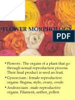 52986_iia. Flower Morphology