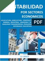 Contabilidad por sectores Económicos