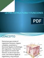La Piel Estructura y Funciones