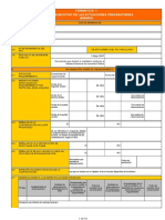 Formatos 1 y 2 Directiva 010 - Resumen Ejecutivo