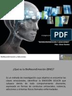 Bioneuroemocion y adicciones cesar vallejo.pdf