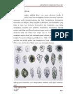 dokumen.tips_foraminifera-besar.docx