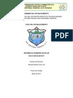 Informe Gobierno Escolar 2017