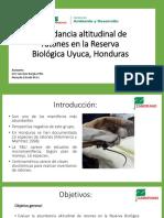 16359 Andrea Ramos IAD PEG Presentación