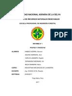 Crucetas y Postes de Madera