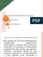 BRIGADAS DE EMERGENCIAS.pptx