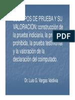tipos_de_prueba_y_su_valoracion-luis_vargas_valdivia.pdf