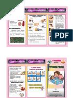 (Fara Meutia) Leaflet Outdoor PKM Lampulo