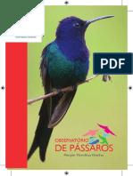Guia Observatório de Pássaros  Parque Vicentina Aranha
