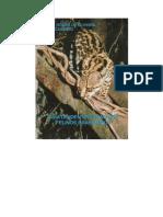 Guia-de-Indentificacao-Dos-Felinos-Brasileiros.pdf