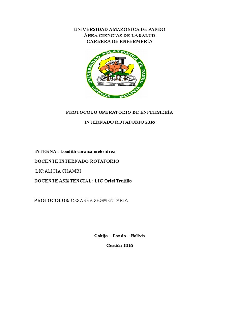 protocolo 2016 leo.docx