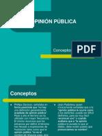 Opinion Publica 03