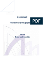 AMF ComiteAudit-Rapport2010 (2)