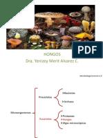 Hongos_completo.pdf