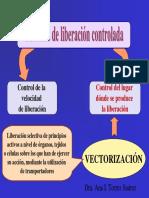 vectorizacion.pdf