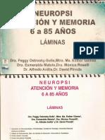 Neuropsi. Atención y Memoria. Láminas..pdf