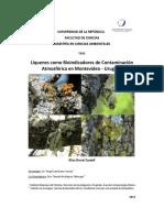 Art. Liquenes MSc C.ambientales Uruguay
