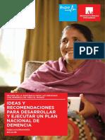 Ideas y Recomendaciones Para Desarrollar Plan Nac d