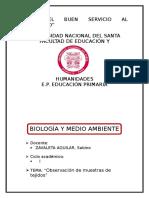 BIOLOGÍA OBSERVACIÓN DE TEJIDOS.docx