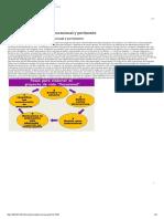 Programación y Desarrollo de Software_ 5.1 Definición de Proyecto Vocacional y Pertinente._ 5