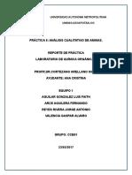 Análisis Cualitativo de Aminas